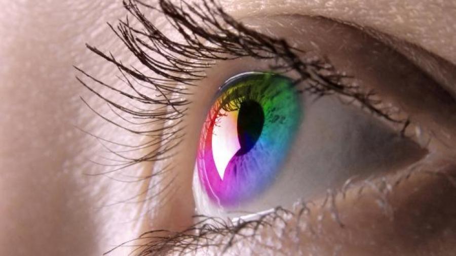 Lens Ürünleri